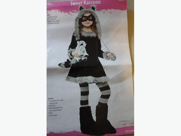 Sweet racoon Costume size youth large 12-14