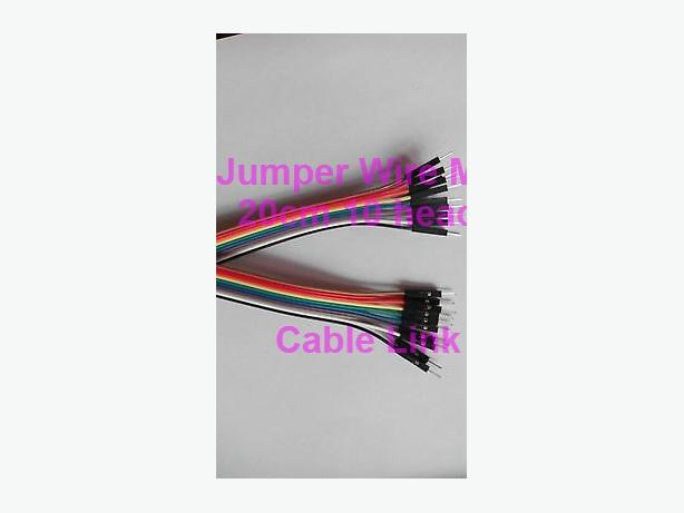 10 heads 20cm Dupont M/M Breadboard Jumper Wire Raspberry Pi