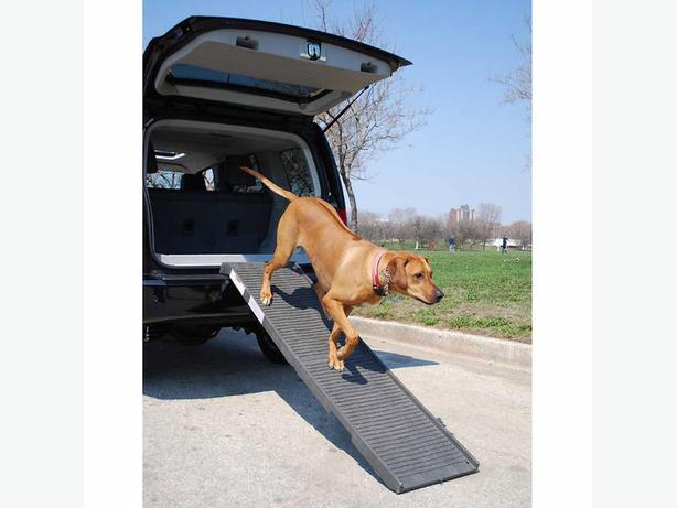 Pet step Large Dog Ramp