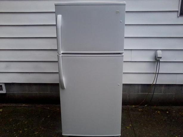 Large White Fridge (free drop-off)