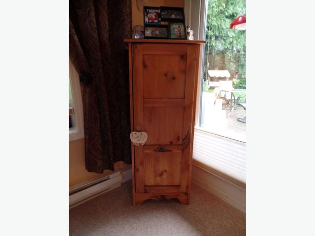 Rustic Pine Jelly Cabinet