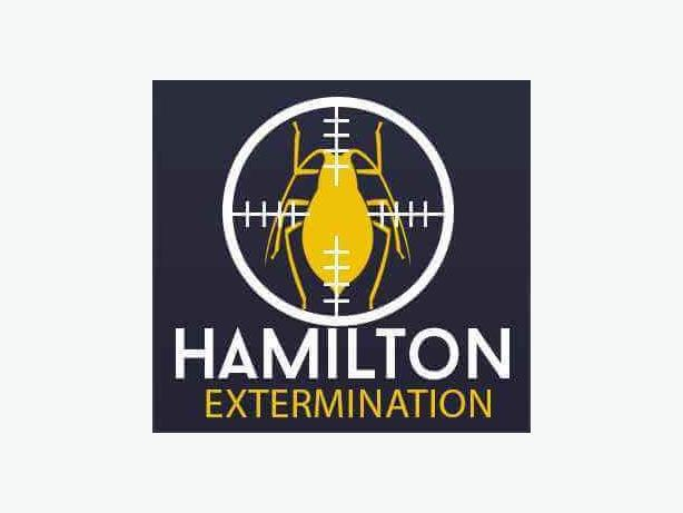 Bed Bug Extermination And Removal Hamilton
