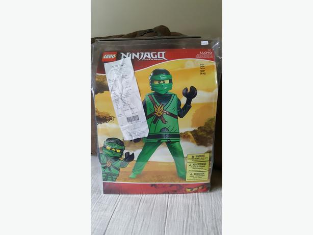 Lego Ninjago Lloyd Costume