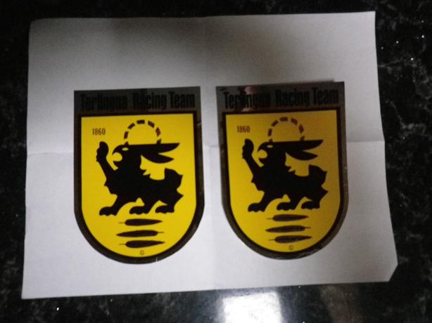 PAIR OF SHELBY TERLINGUA DECALS