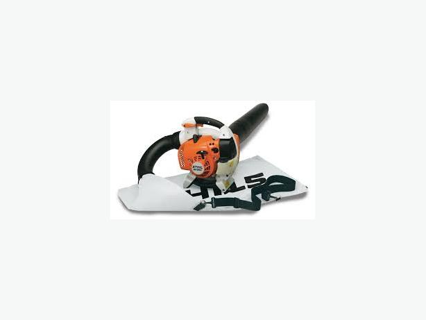 WANTED:  gas powered leaf blower/ bagger