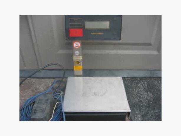 Sartorius Paint Scale