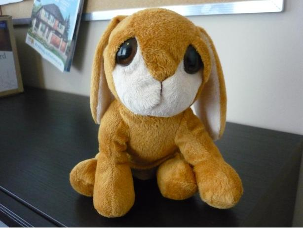 Adorable stuffed Bunny / Rabbit