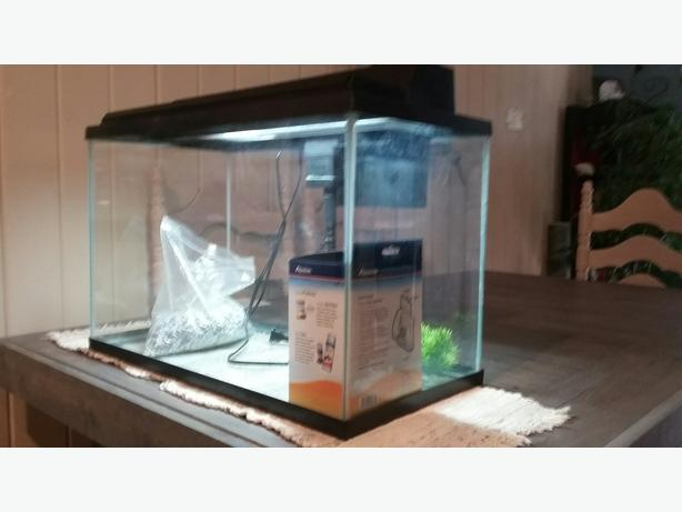 obo -  20 gallon aquarium with NEW LED Lid, newer Aquarien filter