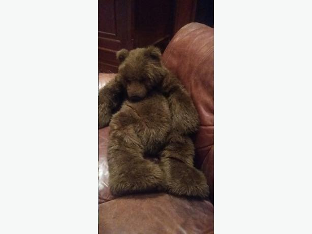 Collectible Gund Bear