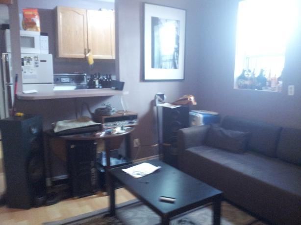 one bedroom apt inby ward markek 15 minute walk from Ottawa University