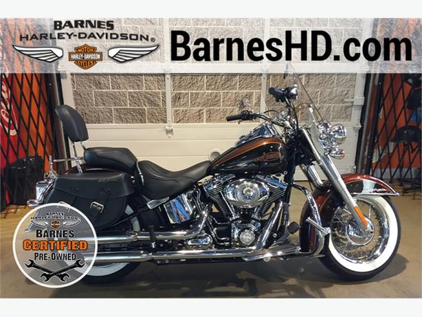2009 Harley-Davidson® FLSTN