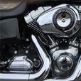 2012 Harley-Davidson® FLD - Dyna® Switchback™