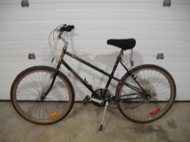 Older bike