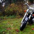 2002 Honda Shadow ACE 750cc