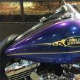 2009 Harley-Davidson® FLHRC