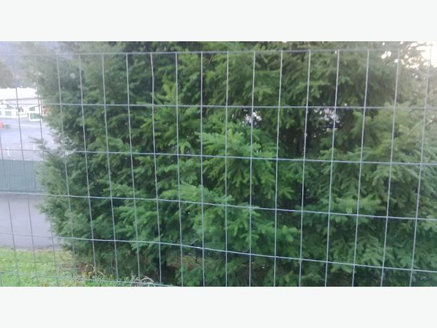 wire deer fence and posts