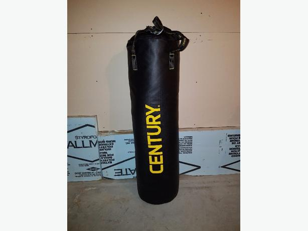 Century 100lb Heavy bag and gloves