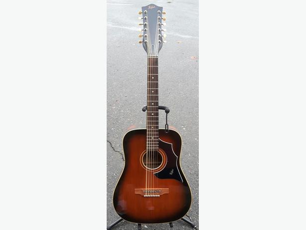 Hofner 12 String Acoustic
