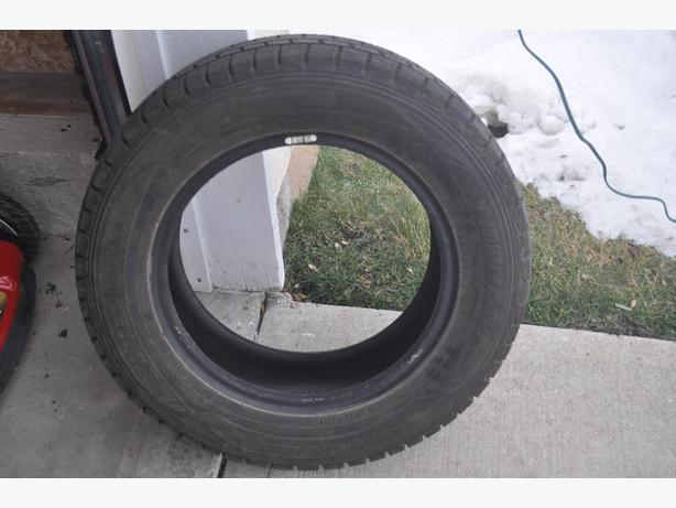 Dunlop Winter Tires