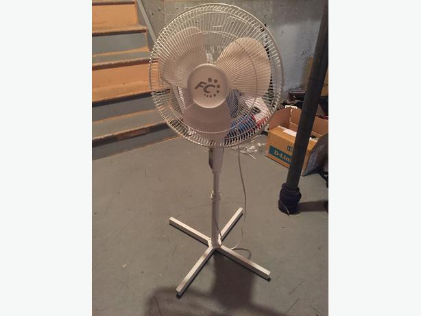 Big fan (white)