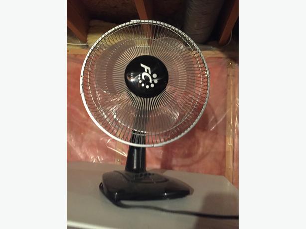 Little fan (black)