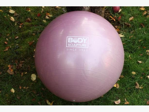 WANNA SCULPT YOUR BODY HERE IS THE BALL FOR IT $10