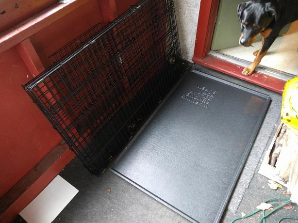 Wire Crate for Large Dog