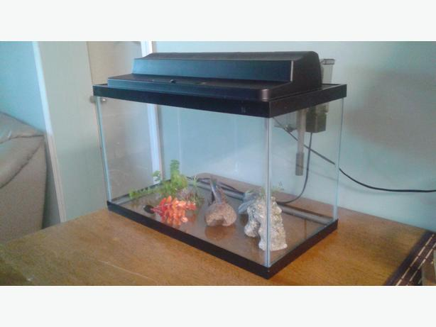 10 gallon fish tank saanich victoria for 10 gallon fish tank heater