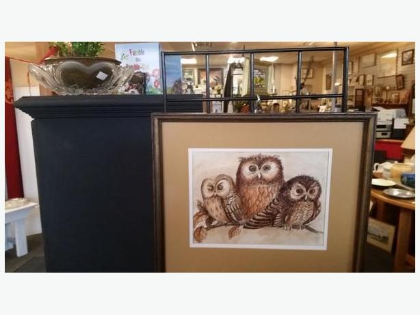 Have a HOOT  when shopping at Right Price Decor