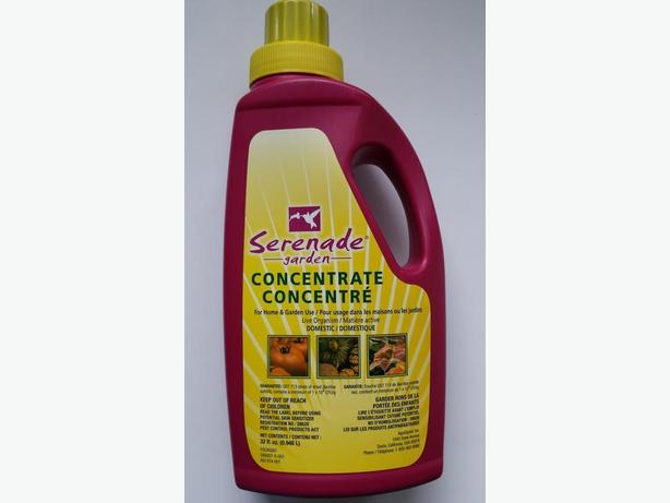 Serenade Garden Biofungicide Disease Control Concentrate 32 Ounce West Shore Langford Colwood