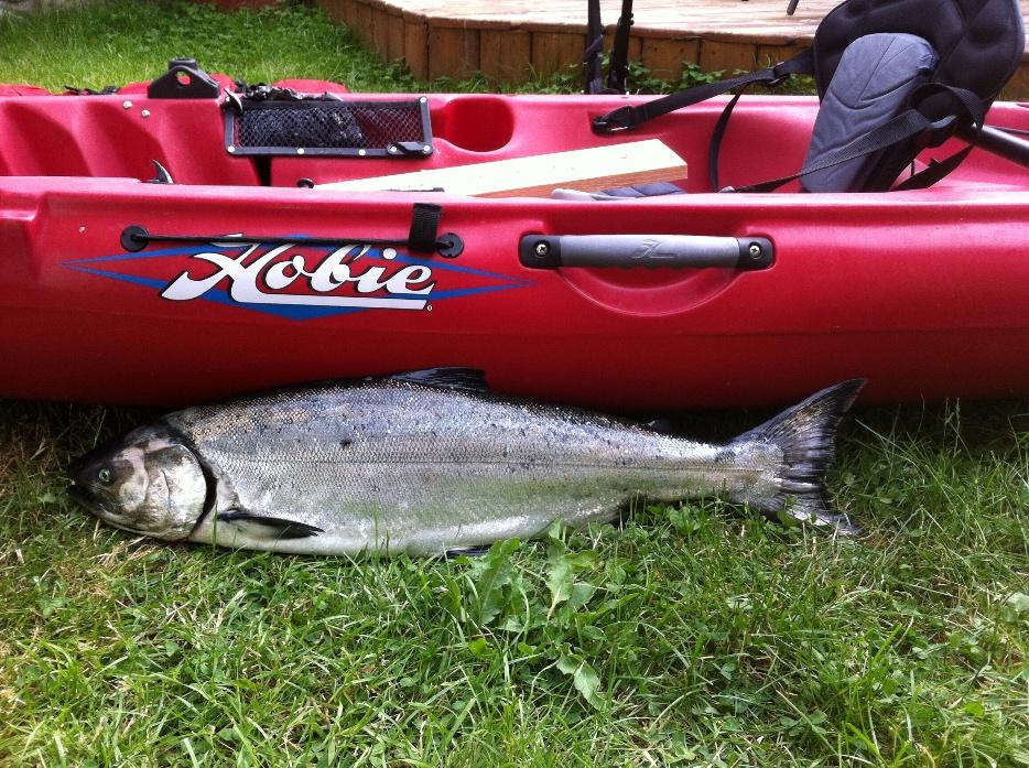 Reduced hobie fishing kayak with all fishing accesories for Used fishing kayak