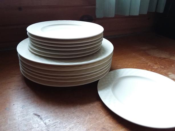 Presidents Choice dinner plates
