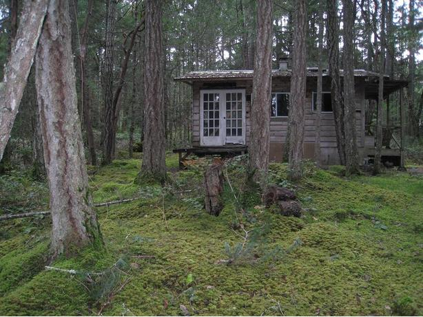 2.31 acre lot with ocean glimpses and rustic cabin