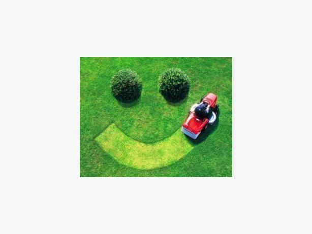 Residential Landscaping Business 799,000