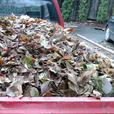 LAKE COWICHAN PROPERTY CLEANUP & HAULING SERVICES