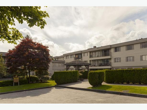 Avail. Dec    2 bedrooms New Westminster Princeton Place Apartments