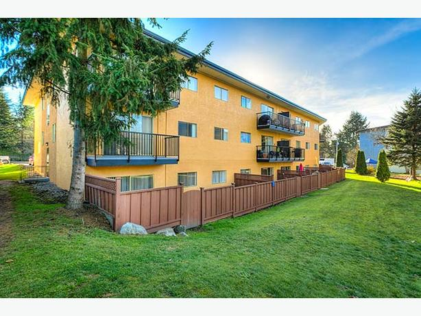Avail. Dec  Cute  2 bedrooms Coquitlam Hyland Manor Apartments