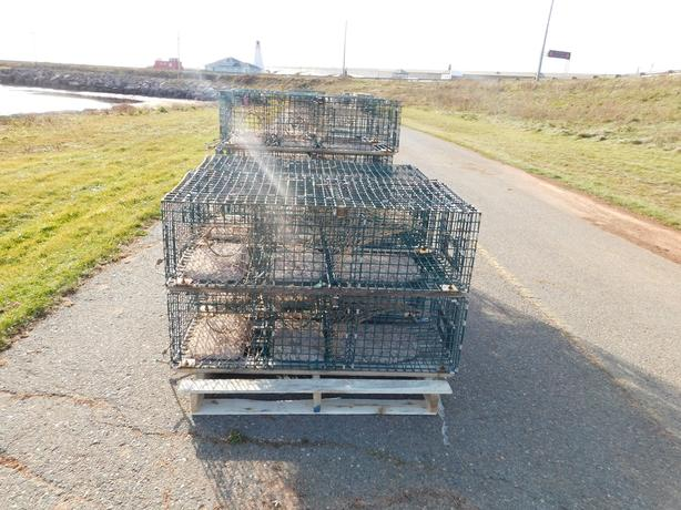 Wire Lobster Traps Phone number 8552927