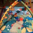 Baby Einstein Seek & Discover Activity Gym Playmat