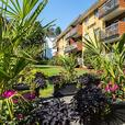 Avail. Dec  Cute  1 bedroom Port Moody St. Johns Apartments