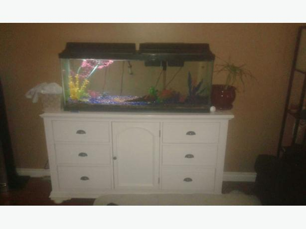 50 gallon fish tank w fish and all accessories north for 50 gallon fish tank