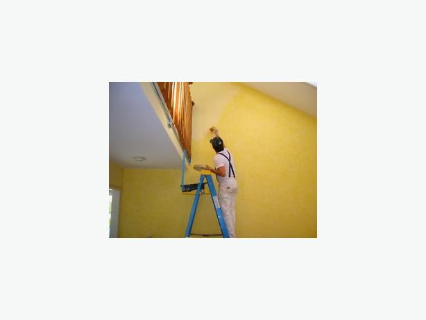 Interior Painter  25 Years Experience  902 628 5056