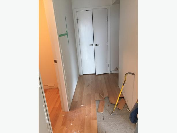 flooring removal and demolition services
