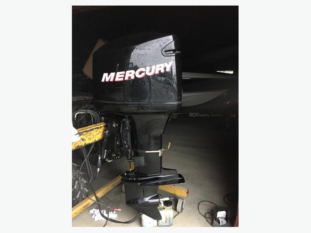 2006 Mercury Optimax 135