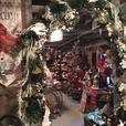 Seasonal Decor and Santa Photos