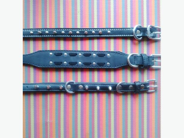 3 New Leather Spiked Dog Collars