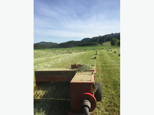 Local Hay
