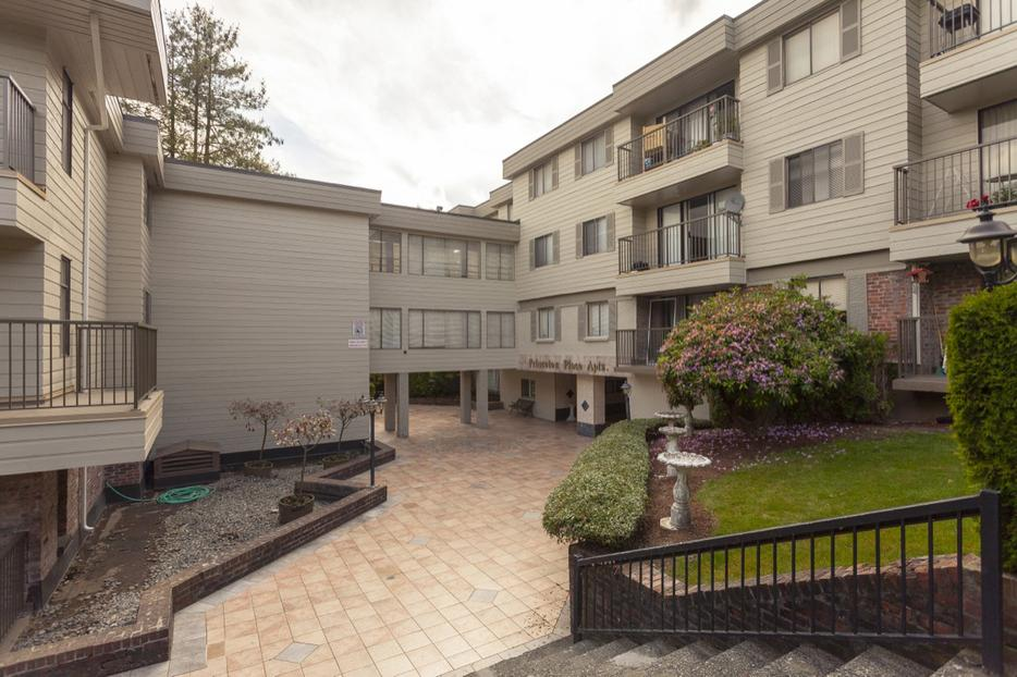 Avail Now Cute 1 Bedroom New Westminster Princeton Place