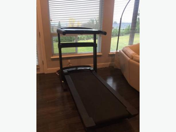 Proform ProDesk Treadmill (workout and work at the same time!)