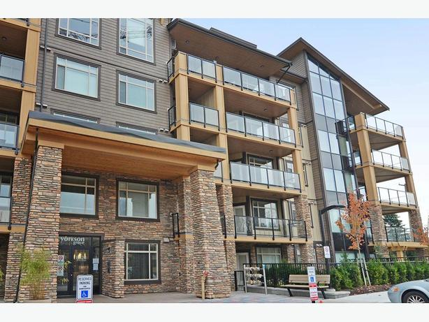 Avail. Jan  Must see  1 bedroom Langley Yorkson Grove Apartments